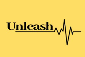 Unleash Inc.